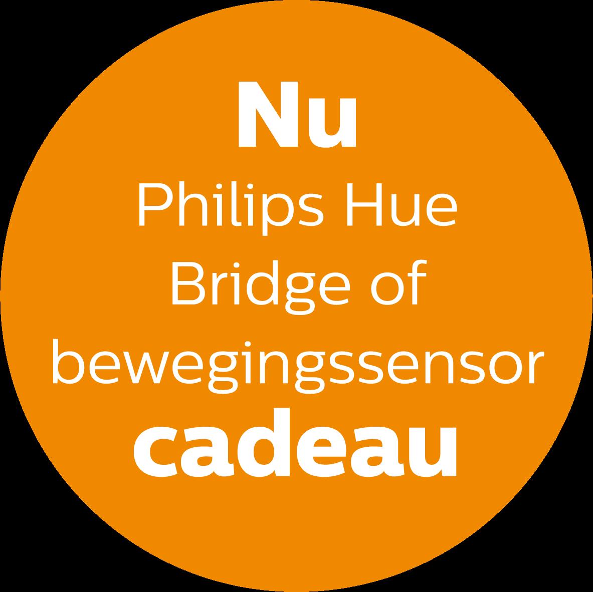 Philips Hue bridge of bewegingssensor cadeau